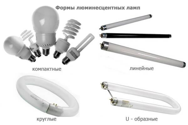 Формы люминесцентных ламп