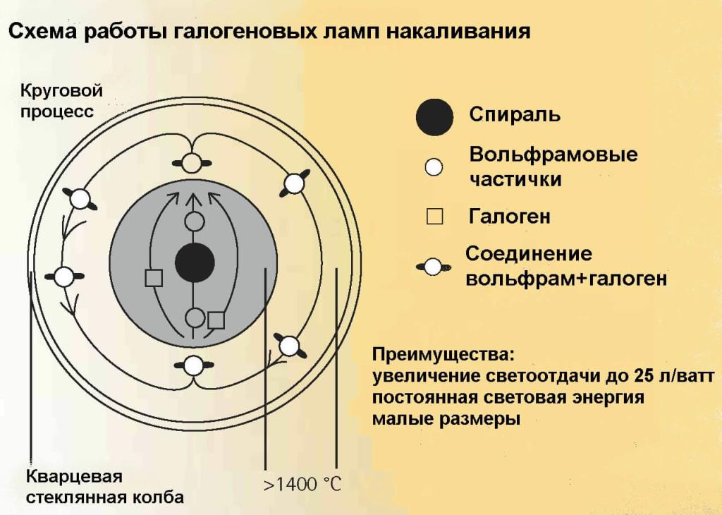 Схема работы галогенновой лампы