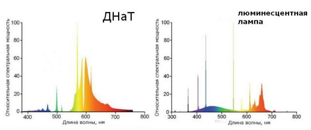 Цветовой спект ламп ДНат и Люминесцентной
