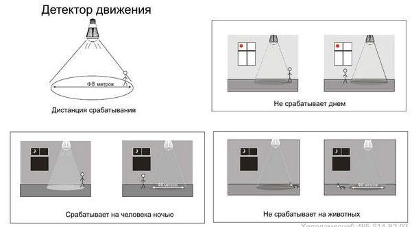 Принцип работы лампы