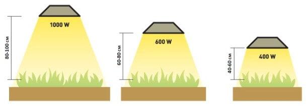 Как размещать подстветку для растений
